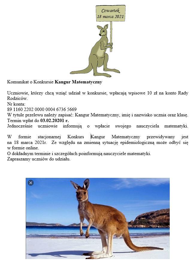 kangur.JPG